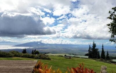Maui Real Estate Trends in July 2016
