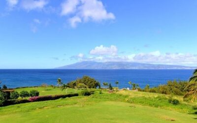 Maui Visitor Spending Spikes in February
