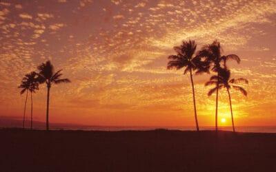 Maui Community Spotlight on Hale Makua Health Services