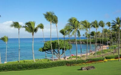 Why Kapalua is the Best Place to Buy Real Estate on Maui