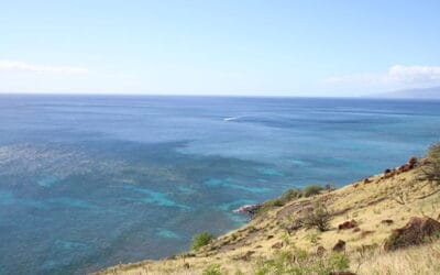 MLP Selling West Maui Affordable Housing Project