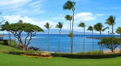 Exclusive Villa Residences at Coconut Grove