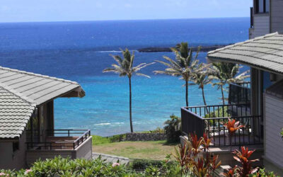 Tips for Buying the Right Maui Home