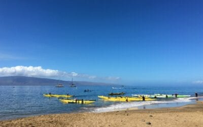 Maui Visitor Industry Growing