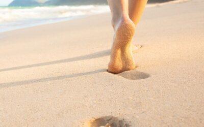 Top Walking Trails and Boardwalks in West Maui