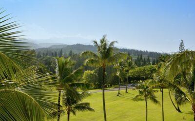 West Maui Real Estate Trends for April 2021